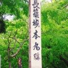 碑だけですが武田氏滅亡の大戦