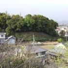 阿波史跡公園から眺める