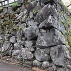 石垣もある。見事な野面積み。