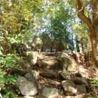主郭土塁上の五社神社