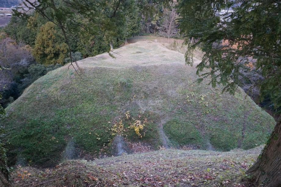 本城郭から小郭との間の畝堀を望む 背後は