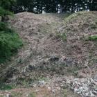 本丸(奥)と二の丸(右)を隔てる堀切がそのまま竪堀となって手前左に落ちていく