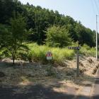 道路沿いの登城口