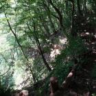利根川の断崖絶壁