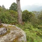 石碑側から二ノ段側を臨む