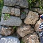 種類の違う石