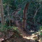伝太鼓曲輪と主郭間の橋が架かっていた堀切