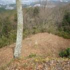 石碑の裏手に段曲輪