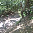 喜多院の敷地内を縦横無尽に走る川越城大堀