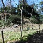 三芳野神社内にある土塁跡