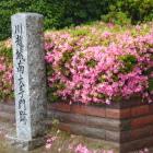 川越小学校門脇に南大手門跡碑