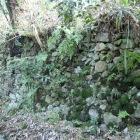 井戸跡横の石垣