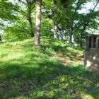 神社北側に土盛りがあるが城の遺構かは不明