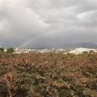 虹がかかった