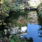 金森長近の正室の名に由来するお福池。水面に小天守が映る