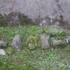発掘調査による北庄城の石垣の根石