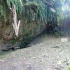 グスク井泉