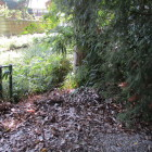 奥の草生えている場所が堀と思われ