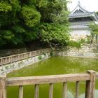ちょっと現代風な池