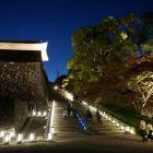 夜の二の丸登り階段