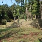 山麓の居館跡。階段状に整地されている