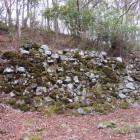 山王丸の大石垣
