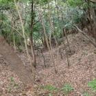 堀切から続く竪堀