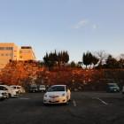 現岡山城の西側にある石垣が前岡山城のものだそうな