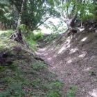 縦横無尽に走る良形の堀・土塁