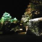岡山城ライトアップ