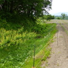 田畑と森林の間の堀・土塁