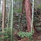松源院弘法大師堂の西にある石垣