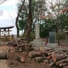 本丸に建つ石碑と説明板