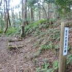 松平右京亮の墓