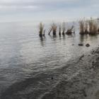 石垣の名残が水面から出ています