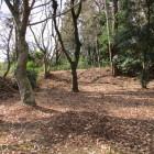 一塁側にある忠魂碑周辺の高台にある推定土塁