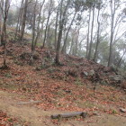 竪土塁(石垣)