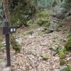 道中はこのような岩場の道あり