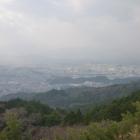 縦に長い林は水城の土塁