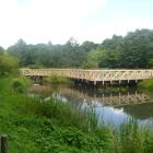 湿地の名残の水生植物園