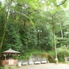 穴澤神社からの登城口。奥の石段から。