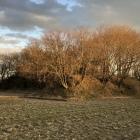 田畑の中の土塁・空堀