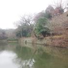 本丸北側の桜堀。