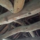 坤櫓三階の天井木組。梁は見事な一本松!