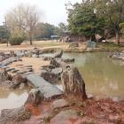 『武蔵の庭園』。樹木屋敷庭園の再現。