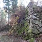 千早門跡。苔むした石垣