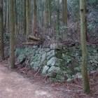 八幡口登り口からすぐに姿を現す石垣