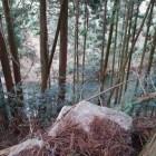 三ノ門付近の屋敷跡から水堀を見下ろす