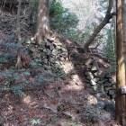 吉野口門付近の竪石垣(上段)
