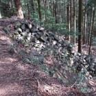 吉野口門付近の竪石垣(下段)
